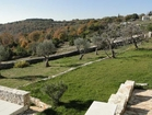 Luxury hotel Nebeska Istria - a breathtaking view of the olive trees and wood