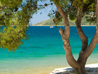 Apartments Bol  - explore a lot of beautiful bays and beaches in Bol